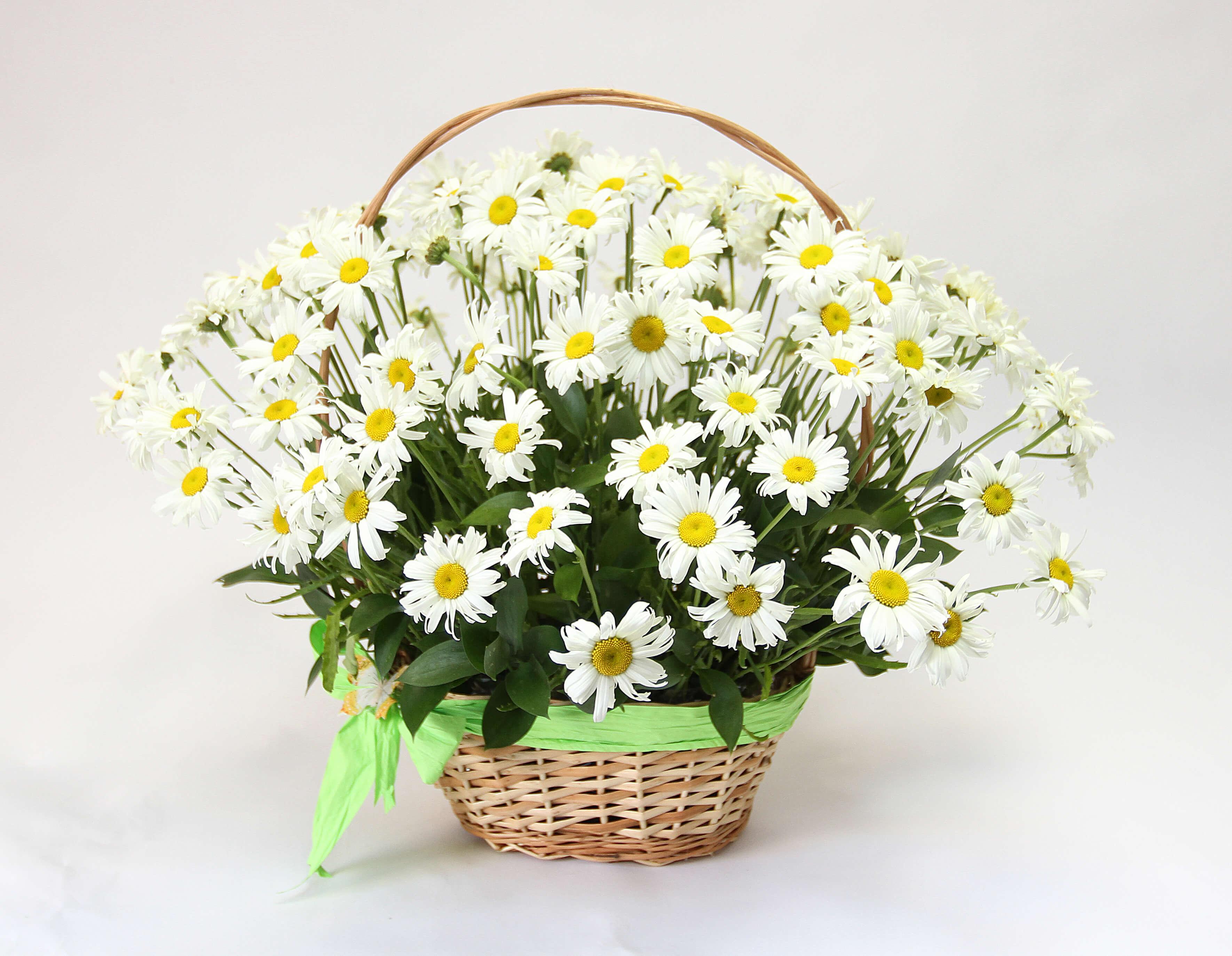 Купить корзину цветов с доставкой