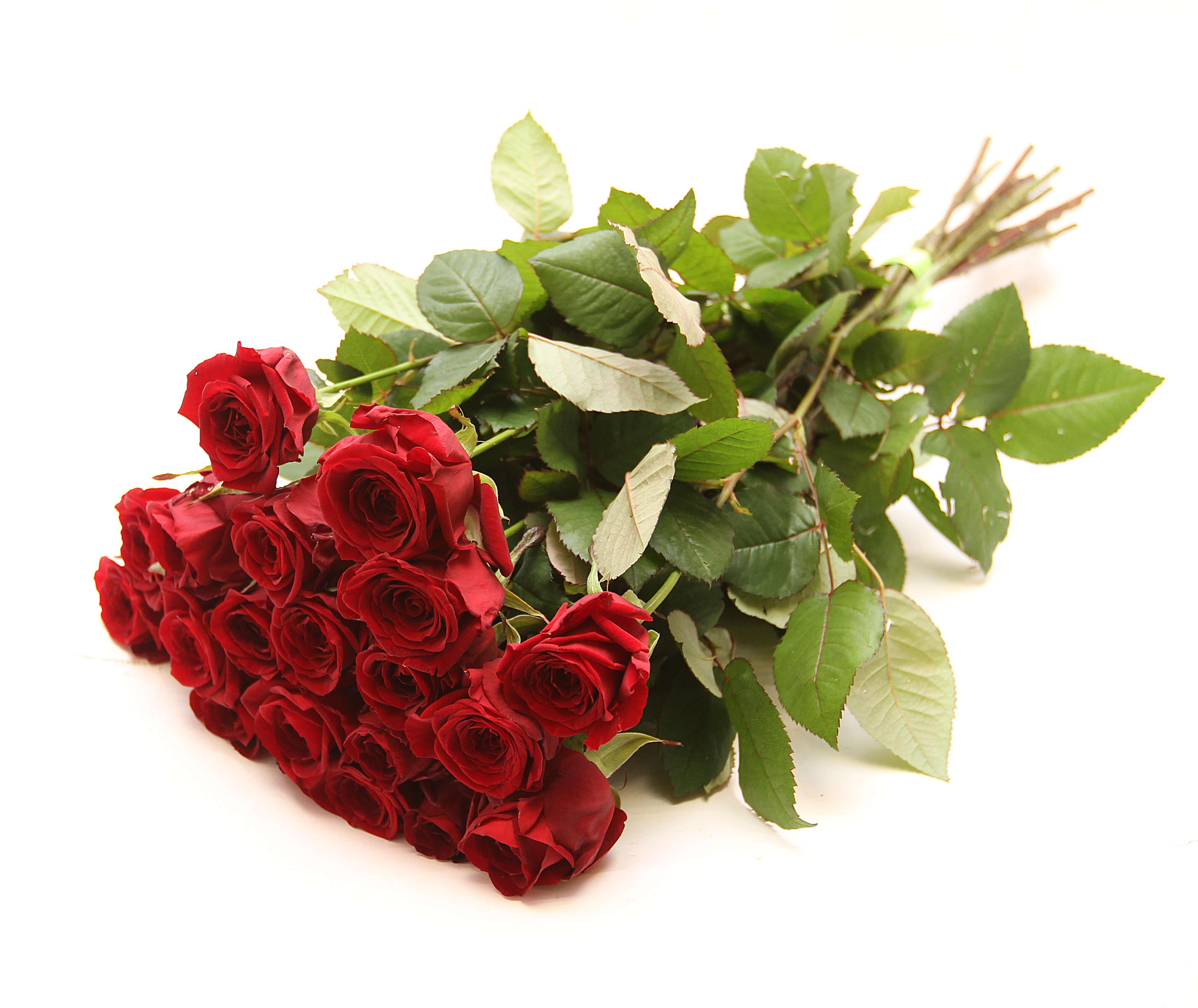 Букеты с доставкой по лененградской области цветы для украшения прически купить киев альстромерия