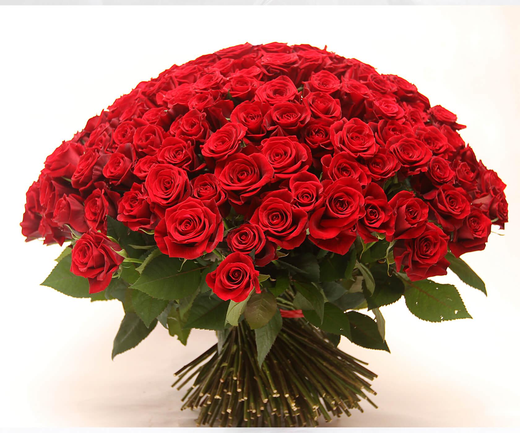 Цаган сар, шикарные открытки розы