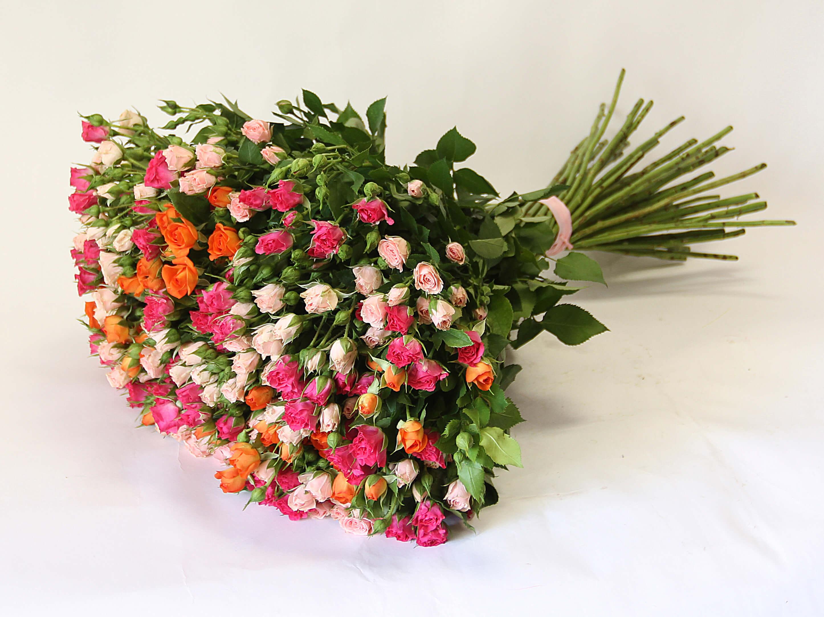 красивый букет из мелких роз этом сегодня предстоит