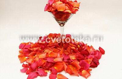 Купить лепестки роз на свадьбу живые